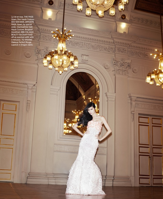 Best of Couture Dior Haute couture gown US Harpers Bazaar May 2013 - saved by Chic n Cheap Living