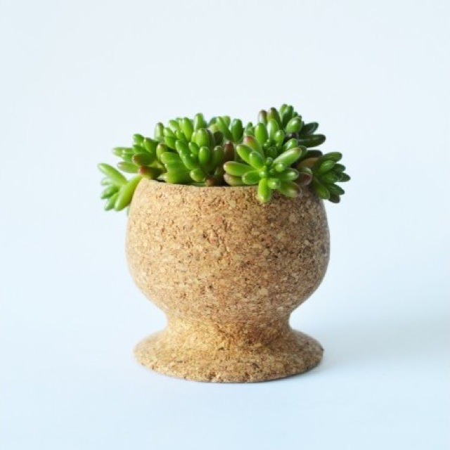 melanie-abrantes-cork-planter-cup-with-plant-brown-brika