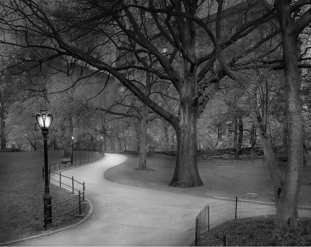 Central Park path by Michael Massaia