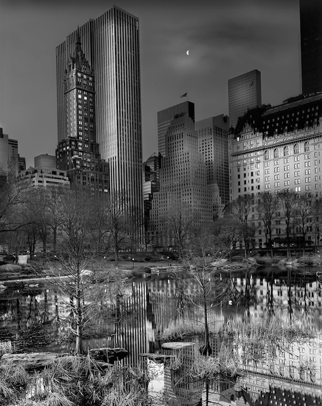 Central Park water reflection by Michael Massaia
