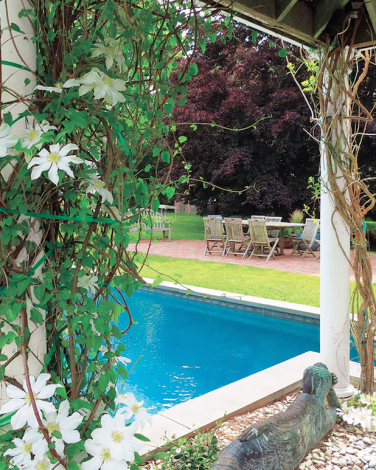 Garden and pool in Elle Decor