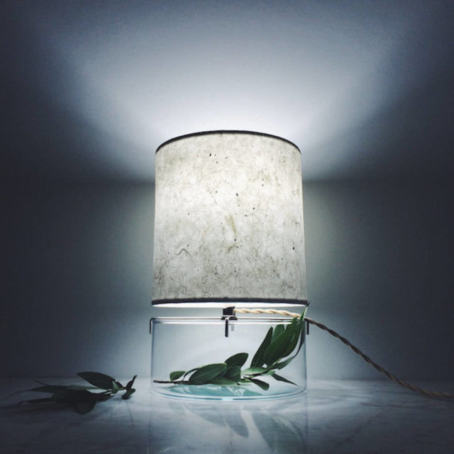 Inventive-Terrarium-Inserted-in-a-Glass-Lamp2-900x900