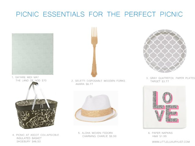 Picnic essentials for the perfect picnic by little luxury list