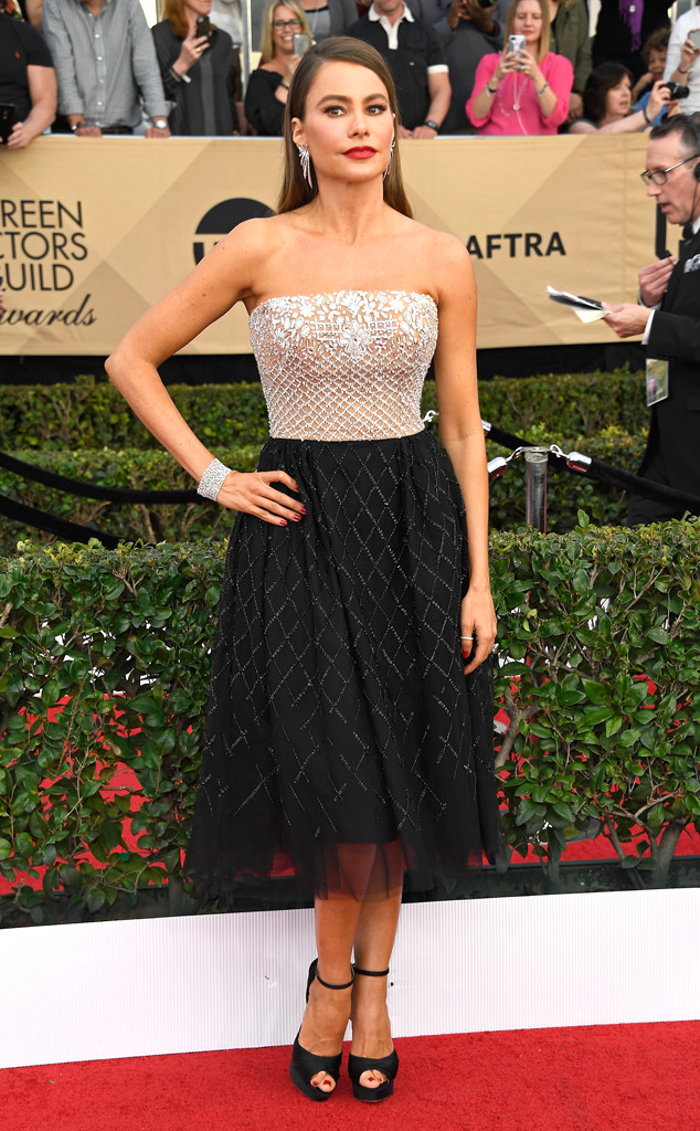 2017 SAG Awards best dressed - Sofia Vergara in Zuhair Murad