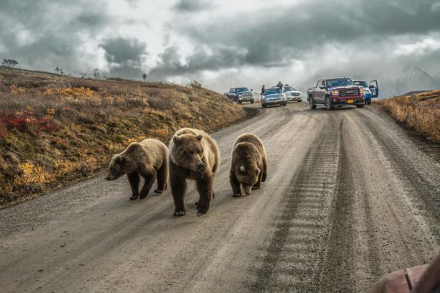 National Geographic best pictures of 2016 photo by Aaron Huey