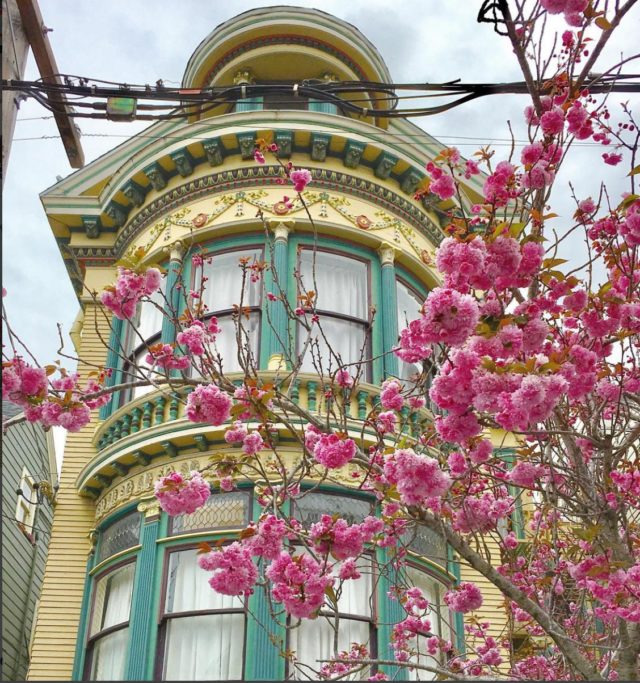 Colorful houses in San Francisco by patrix15 - yellow and blue