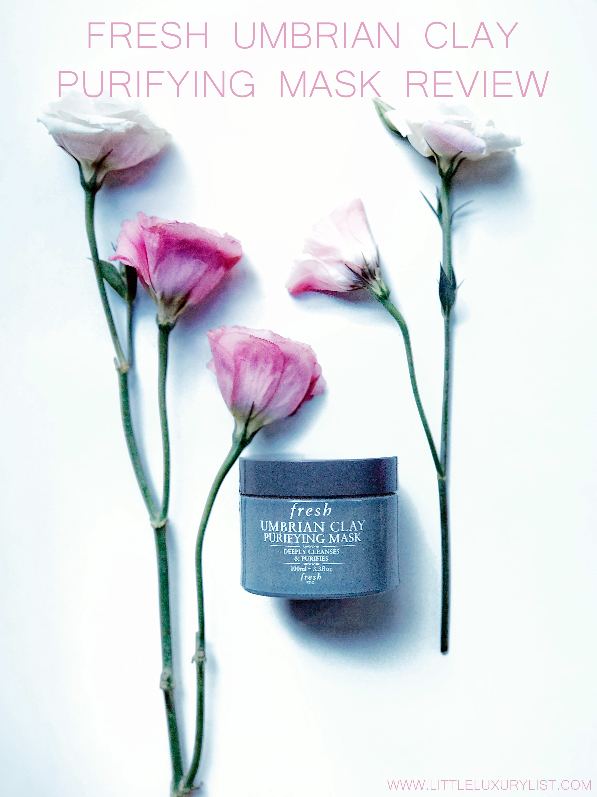Fresh Umbrian Clay purifying mask with roses portrait view